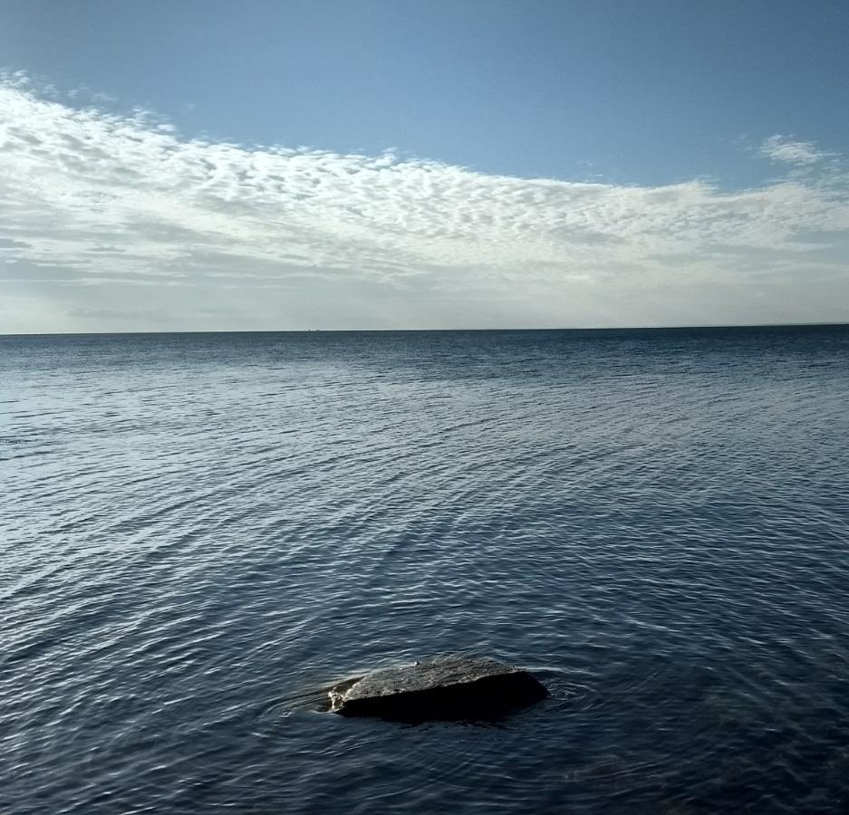 Sea-cropped